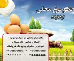 طرح لیبل فروش تخم مرغ محلی